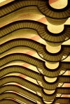 Picture of curve patterns